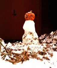 snow_creatures